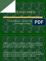 Patologia Geral Lesao