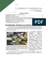 09_invertebrados_1eso