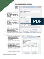 Practica Desarrollo de Sistemas_2013_2