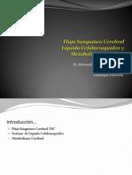 Flujosanguneocerebrallcrymetabolismocerebraldr 140503235521 Phpapp02 (1)