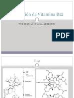 extracción y purificación de vitamina B12.pdf