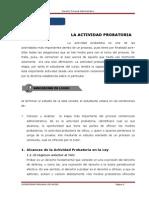 Unidad Vi - Actividad Probatoria (1)
