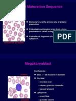Platelet Maturation
