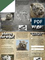 2009 White Tiger Brochure