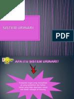 Sistem Urinari