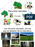 Recur Sos Natural Es