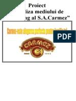S.A.Carmez
