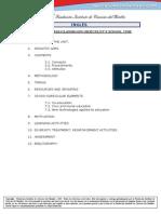 2_Unidad Didactica - Programacion Ingles