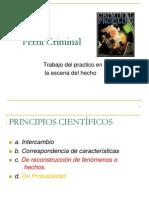 2. Perfil Criminal.ppt