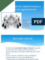 Disertacion Comoetencias de Empleabilidad