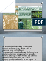 inventarioforestal-131024161510-phpapp02