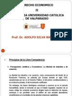 Principios Derecho de Defensa Libre Competencia