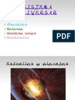 presentacion de galaxia