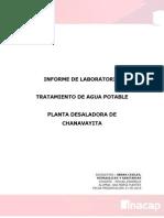 Informe de Laboratorio Chanavayita