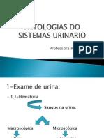 Patologias Do Sistemas Urinario_20130815100902