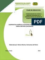 Plan de Negocios Secado Cacao Cacaosafer