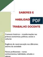 CALDEIRA 2001 AFormaçãoDeProf.edf Saber Habildd PPT