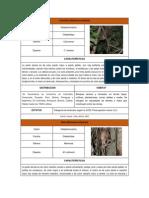 Ficha Fauna Editado