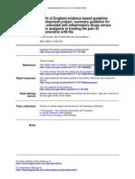 Guia uso AINES.pdf