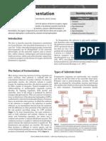 Bacterial Fermentation Nature