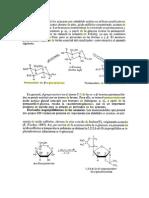 Acetilación de Azucares