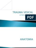 Trauma Vesical