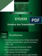 5rev Enzimologi Strukturnomenklatur 2013