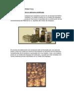 Alcachofa Conserva