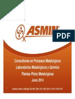 Presentación ASMIN Junio 2014