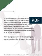 P1i User Guide