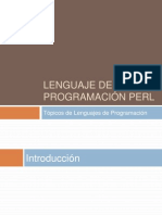 PERL final.pptx