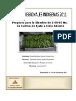 Proyecto Hortalizas Paulino Vazquez Leal-2