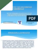 losproyectosysuscaracteristicasfundamentales-120616190810-phpapp02