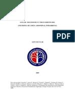 Guia Aneurisma de Aorta Abdominal