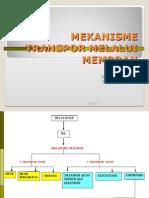TRANSPORTASI MEMBRAN