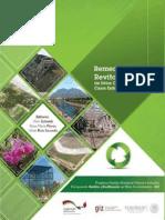 Remediación y Revitalización de Sitios Contaminados_Casos Exitosos en México