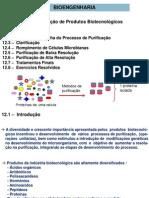 Capitulo-12_Purificação de Produtos Biotecnológicos