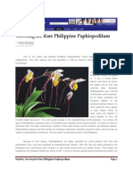 MB Article Growing the Rare Philippine Paphiopedilum