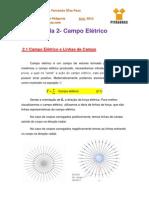 Notas de Aula 2 - Campo Elétrico (Linhas de Força)