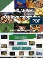 Invertebrados Completo