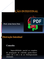 OBSTRUÇÃO INTESTINAL - Artur.pdf