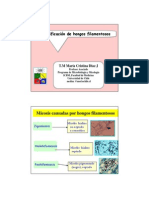 Presentacion Mucor 5_Diaz_MCristina