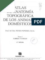 Atlas de Anatomia Topografica de Los Animales Domesticos (Peter Popesko) Tomo I