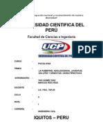 trabajo FINAL1.doc