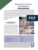 Mushroom Cultivation and Marketing