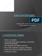 Aracnoidismo