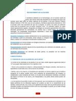 PRACTICA N° 1.docx