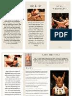 sumo wrestling brochure