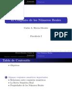 precalculo1 numeros reales 2013 1.pdf