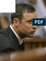Pistorius Trial Judgement